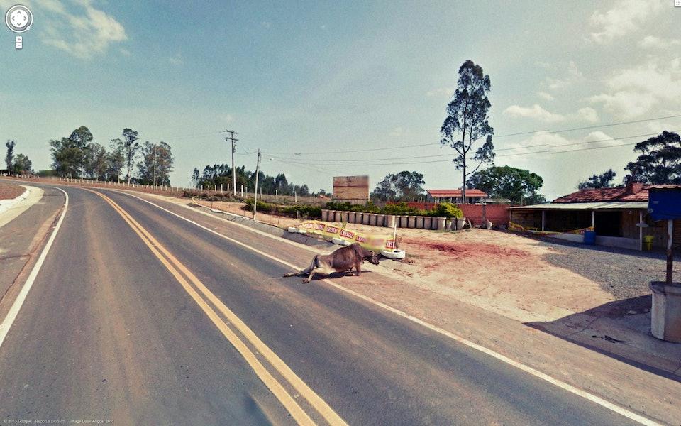 google-street-view_07