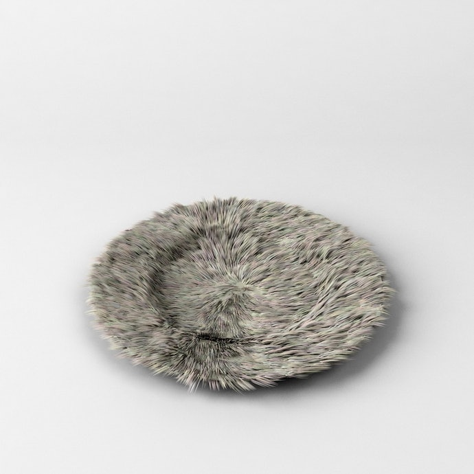 5-1_furry-plate_resize