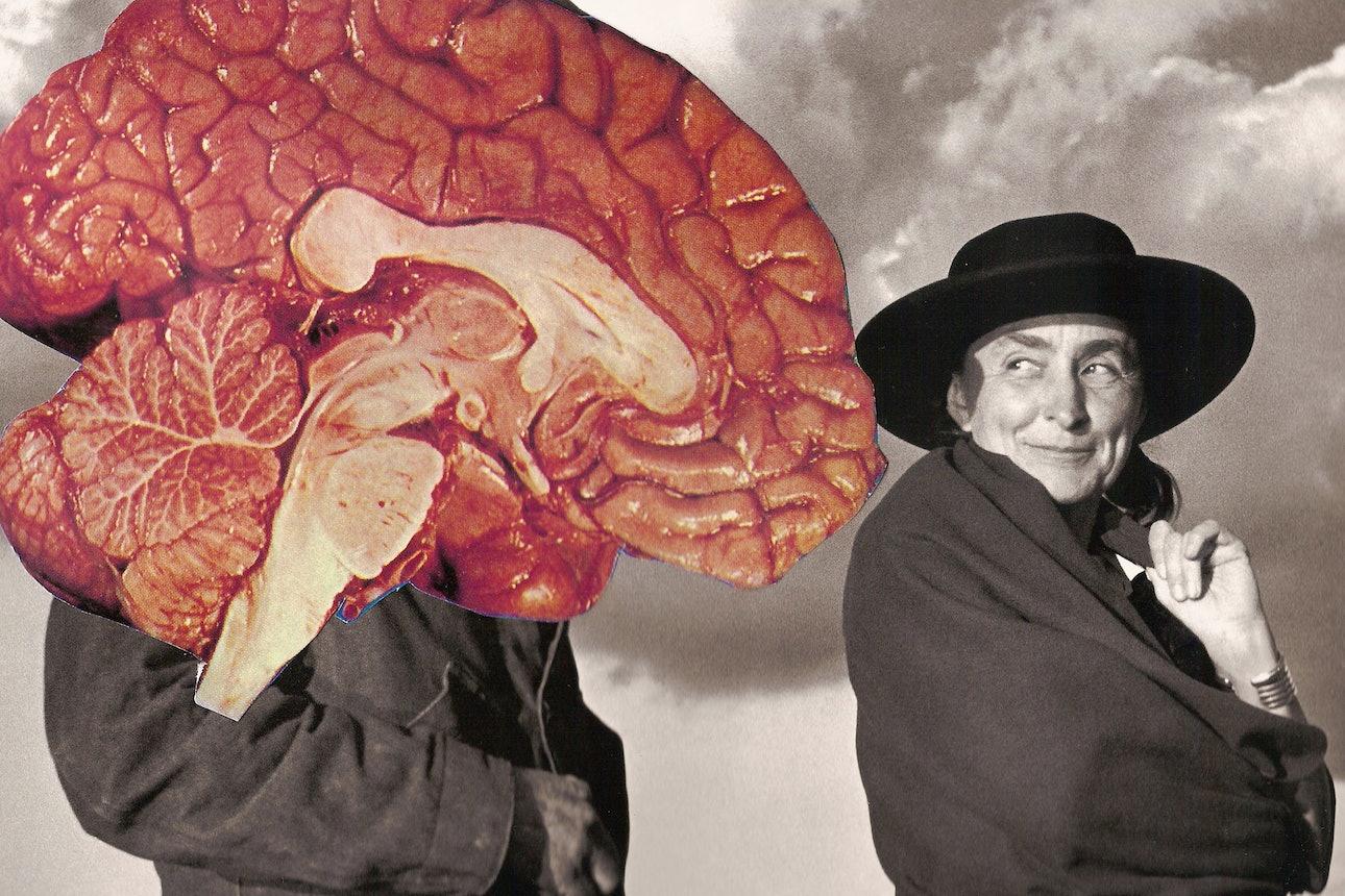 brains_01