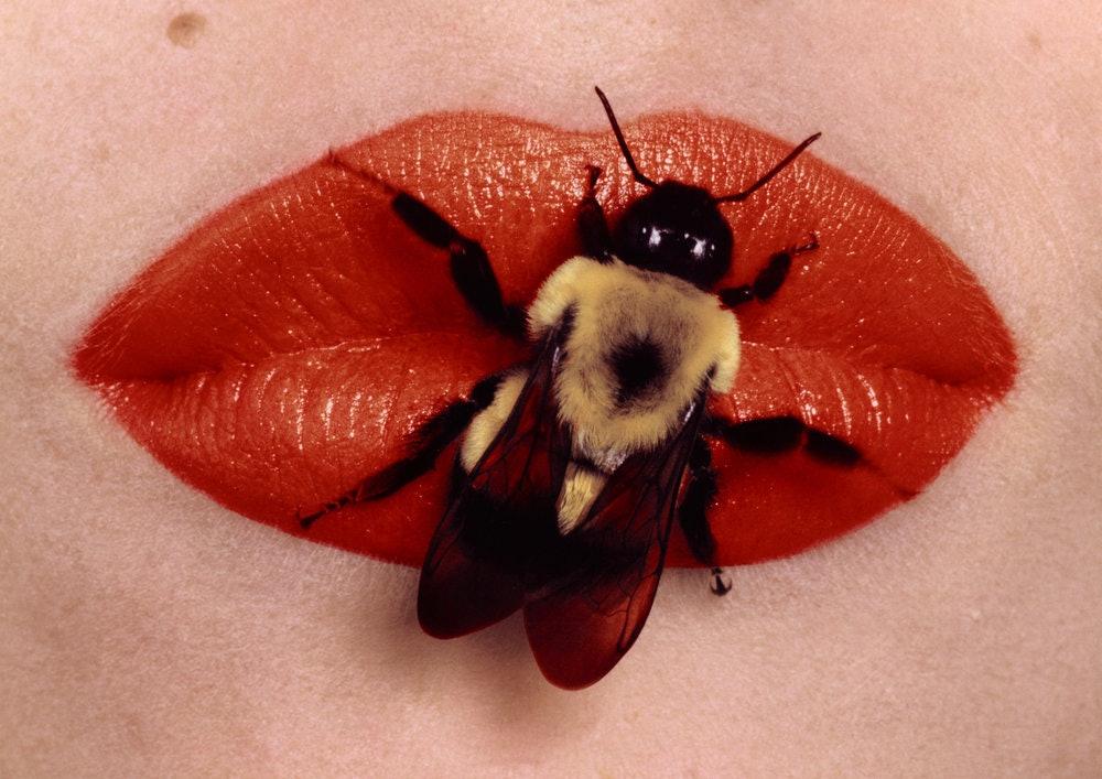bee_on_lips_new_york_1995