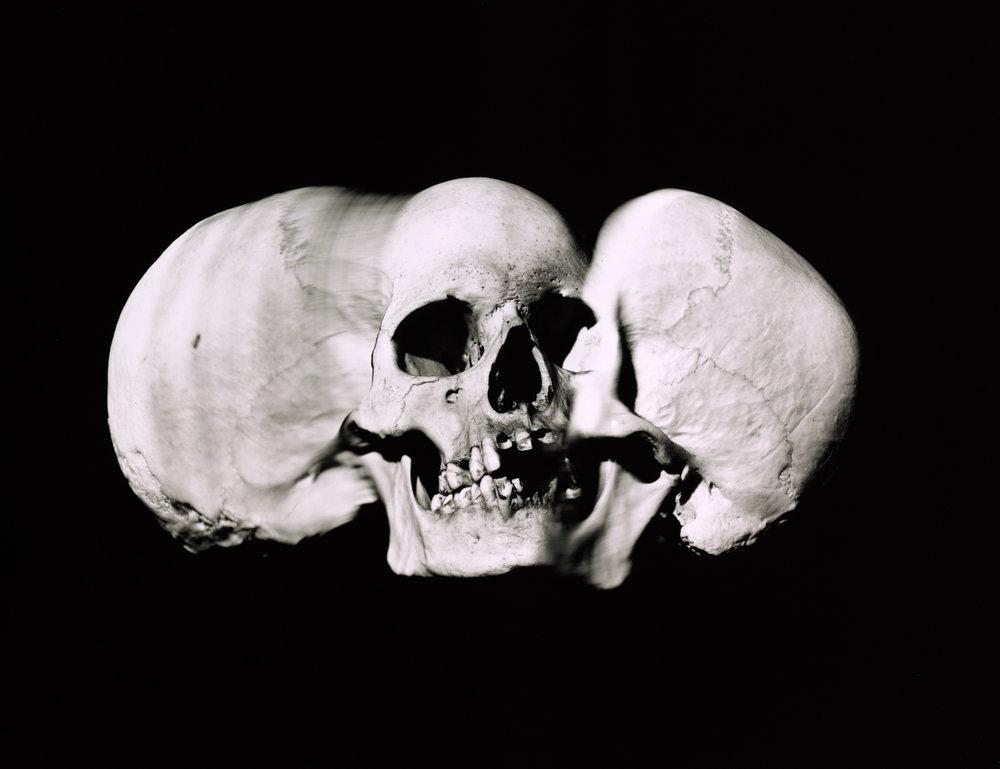 wide_skull_a_new_york_1993