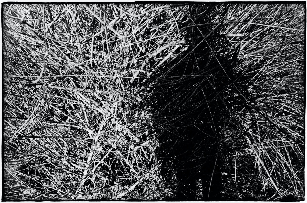Emptiness_22
