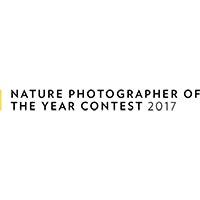 contest-november-2017_03