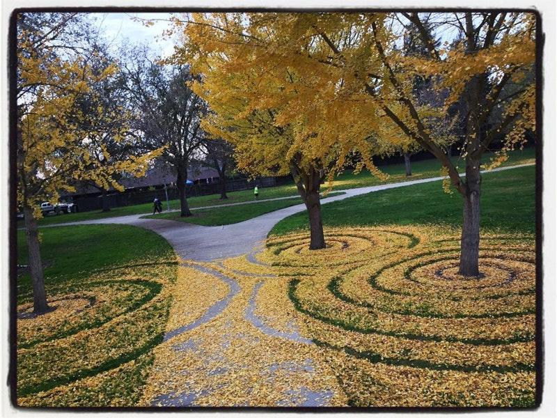 leaf-labyrinth_04