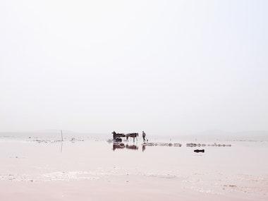 02_salt_and_oil