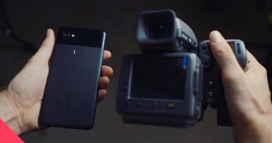 Возможности камеры Google Pixel 2 сравнили с Hasselblad за $20 тысяч — Bird In Flight