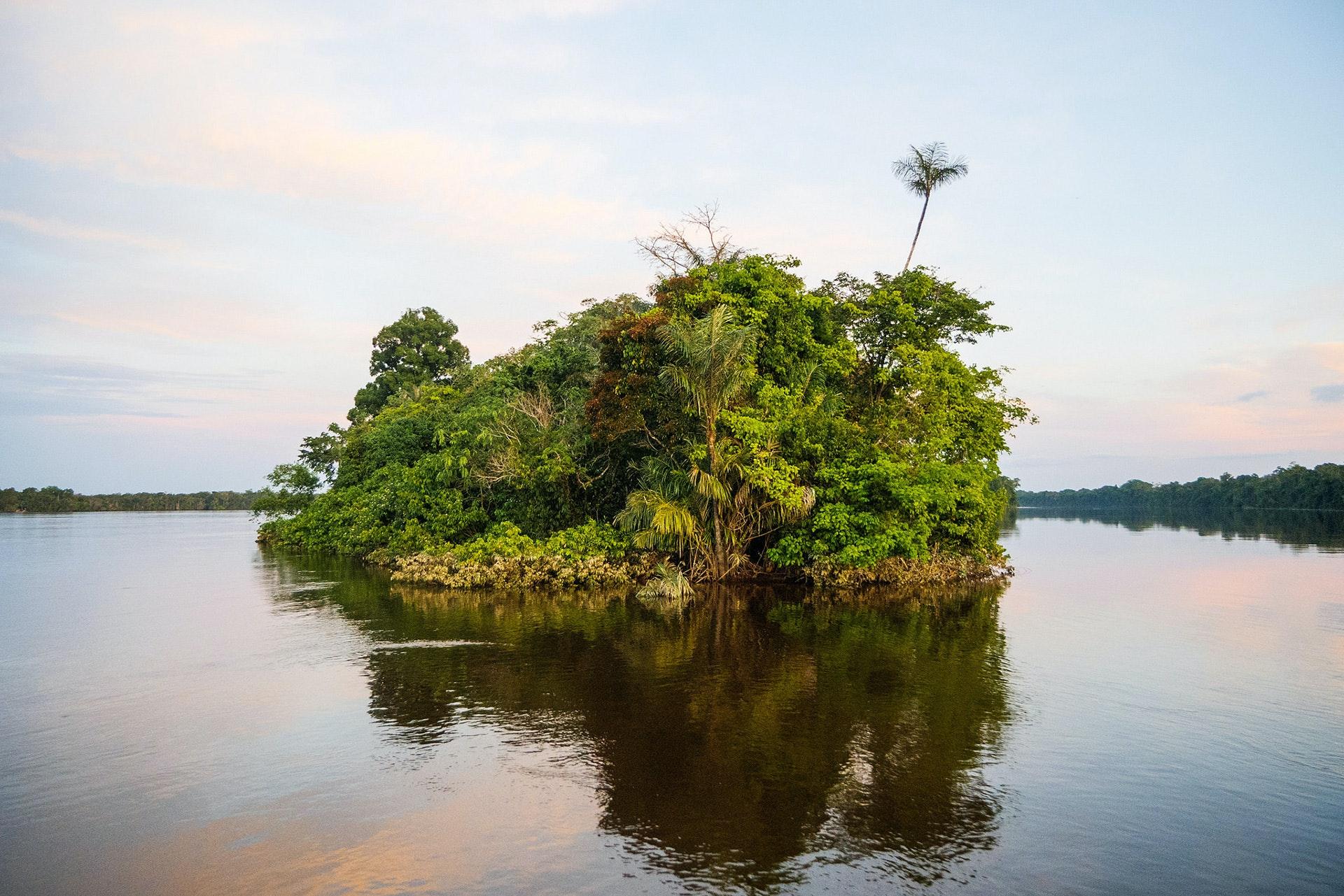 Amazonia_12