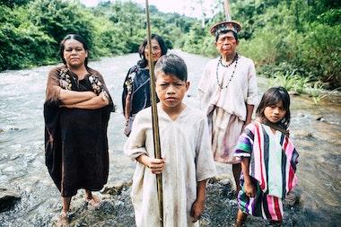 Amazonia_13