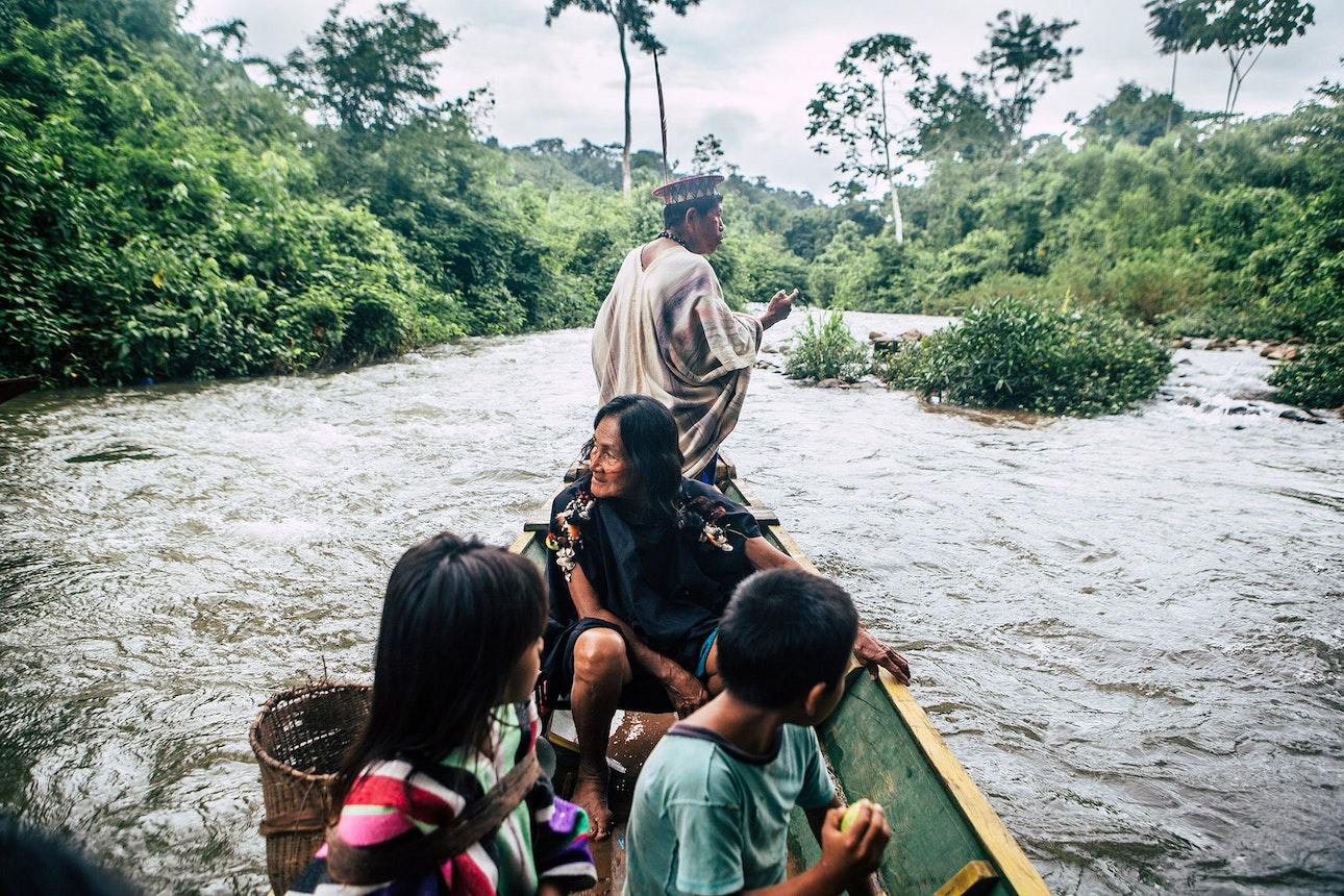 Amazonia_14