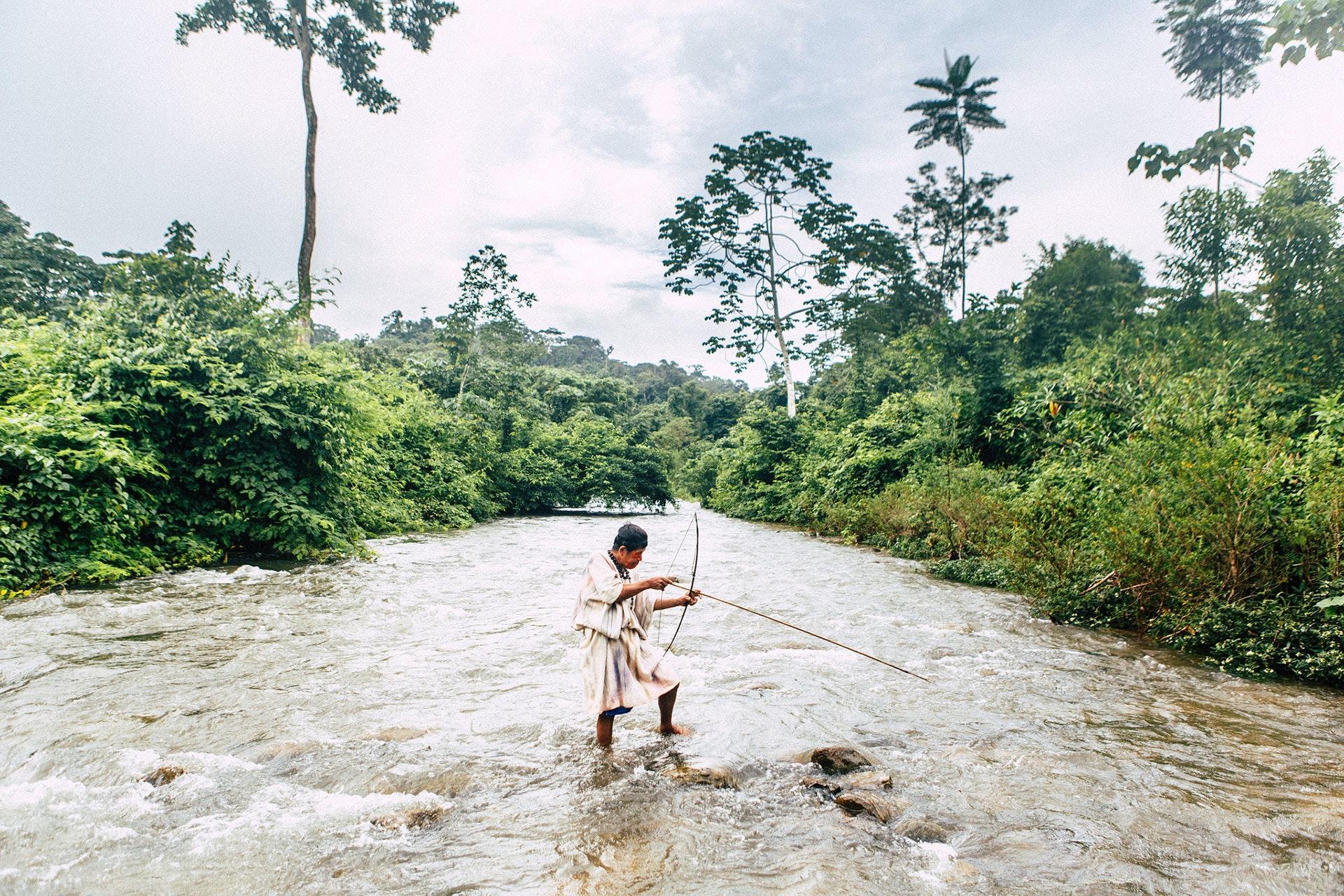 Amazonia_15