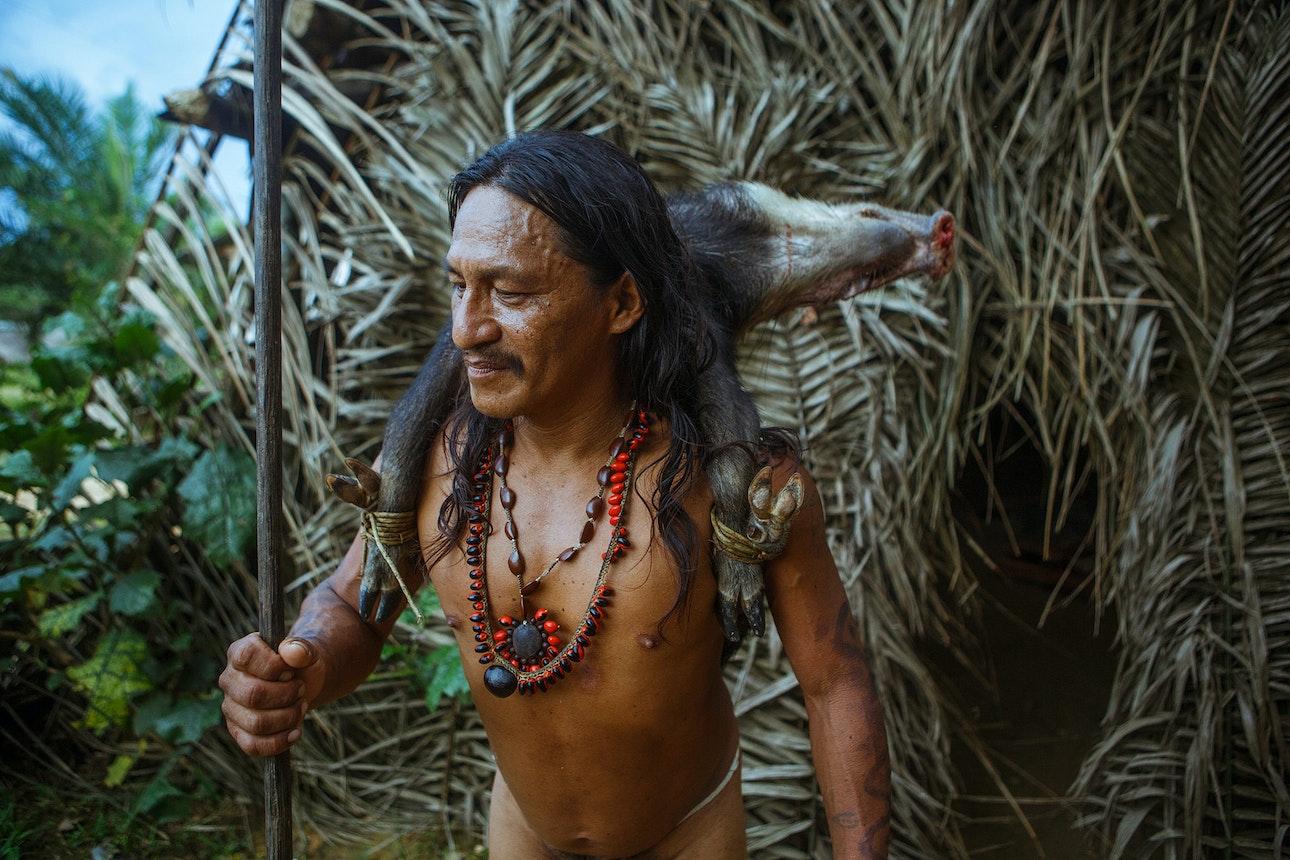 Amazonia_16