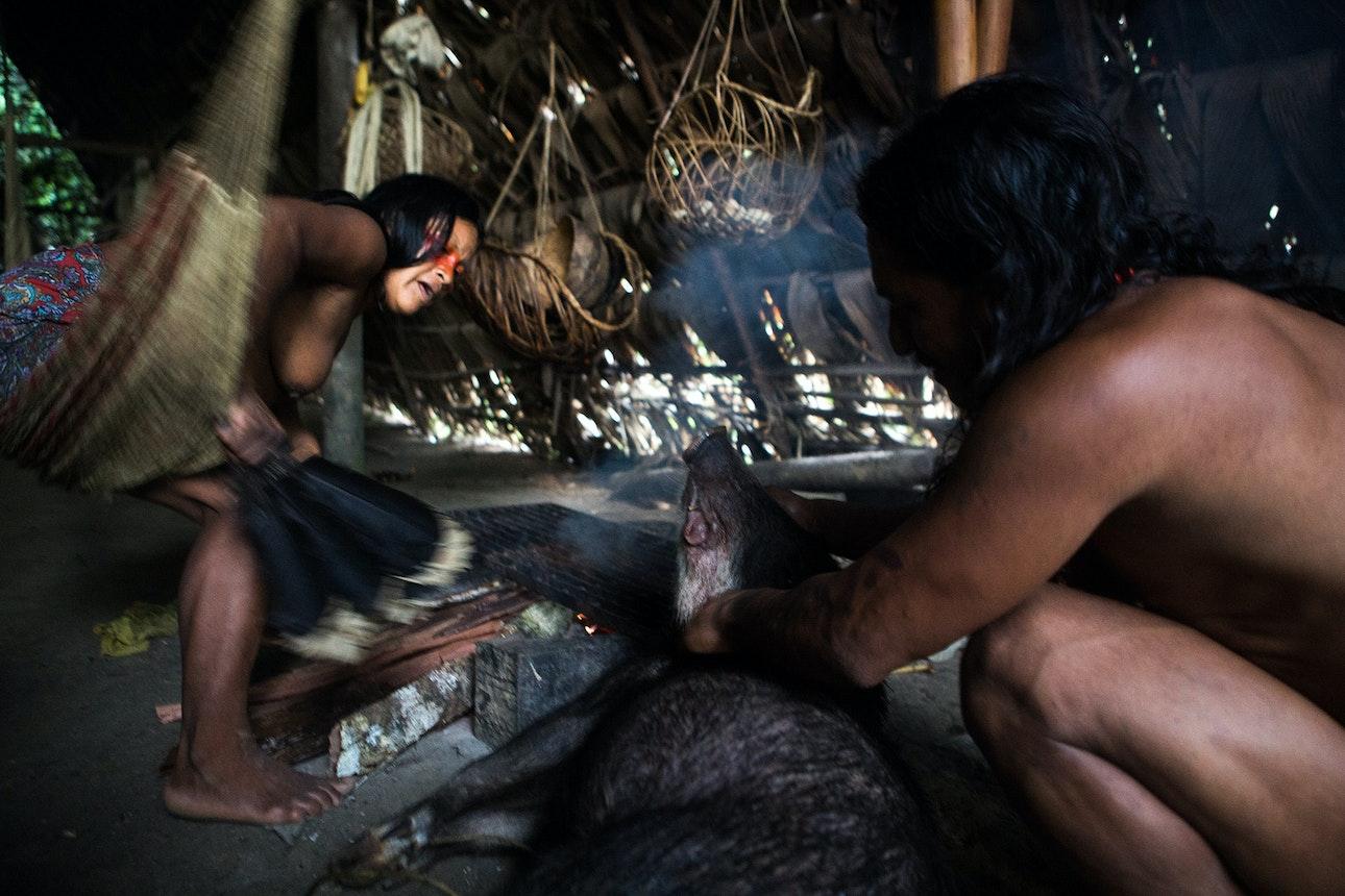 Amazonia_17