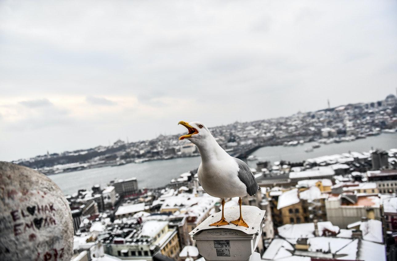europe-snow_01