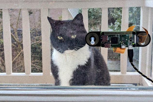 Программист изАмстердама создал устройство для распознавания морды кота