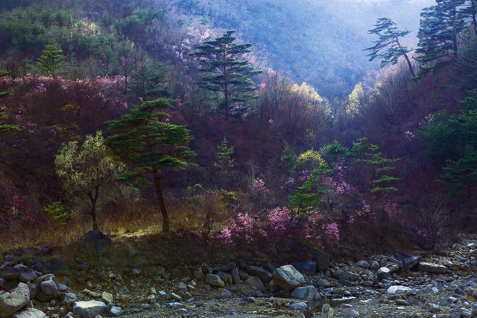 NORTH_KOREA_07