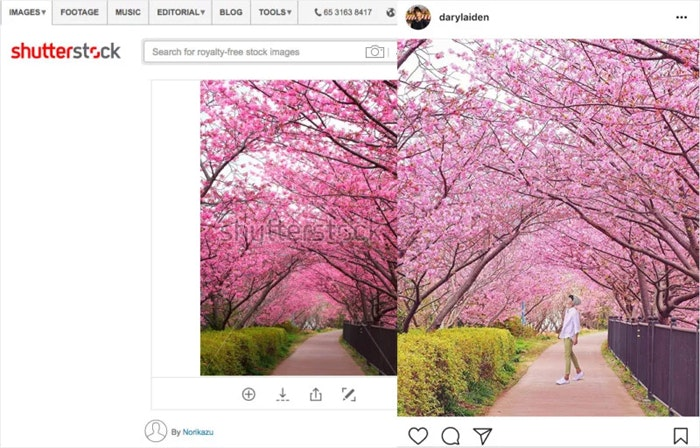 fake-instagram-photos-account_04
