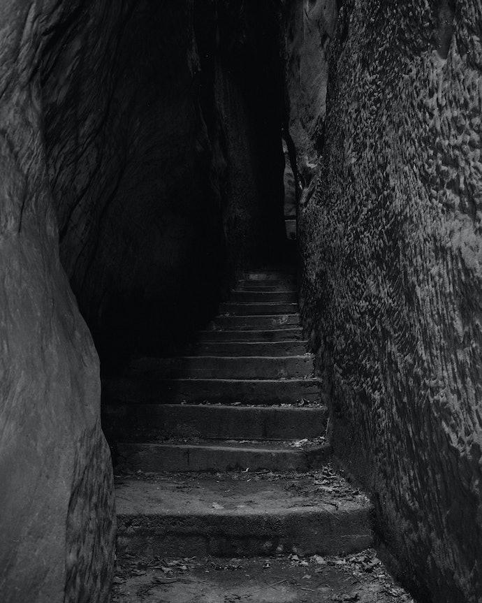 Snake_zelenkova_stairs_press