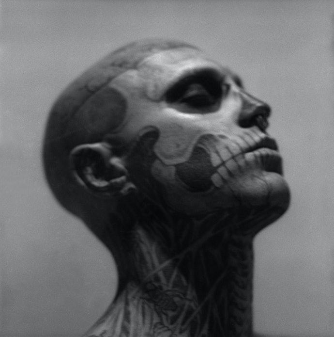 2-Indelible-mask,-2011