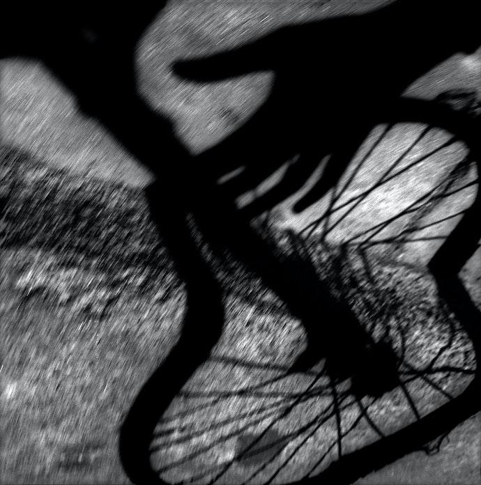 5-Fierce-expressionism,-2014