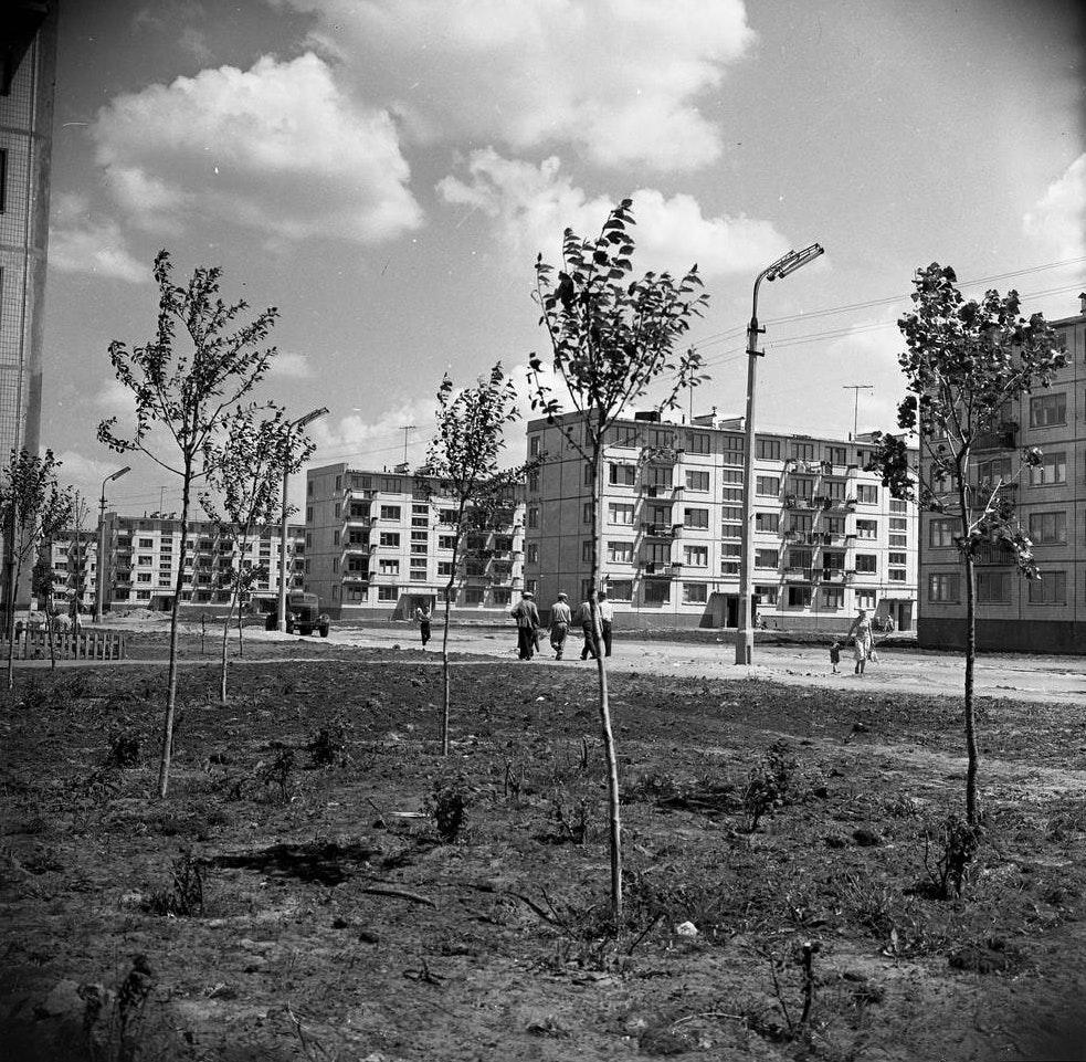 02_Новый-жилой-массив-–Воскресенская-слободка_1963_фото-Ирины-Пап