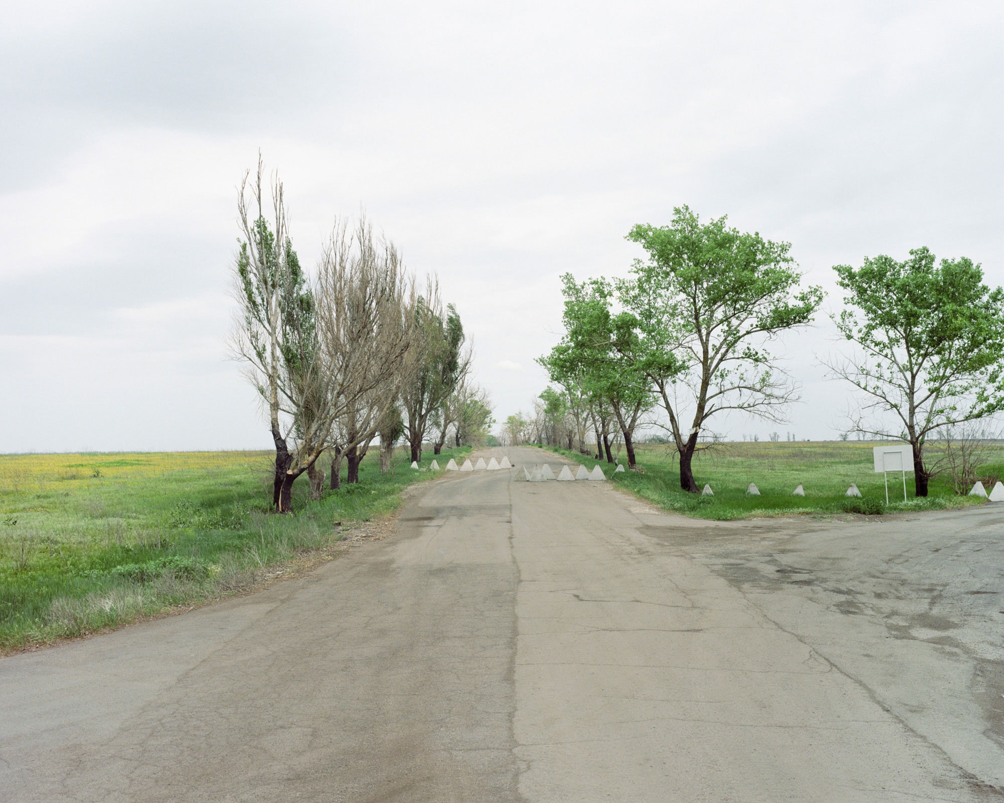 yan_yurchak-1