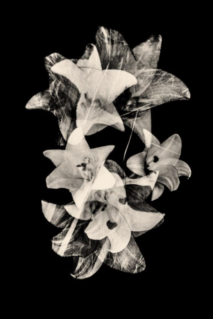 016-Paul-Cupido-Continuum-lowres
