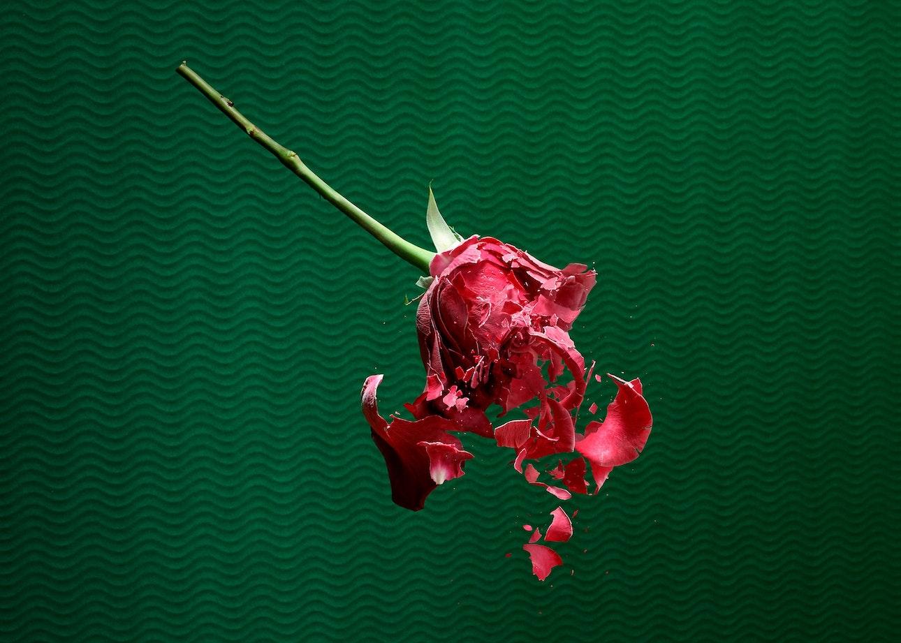 paloma-rincon-06