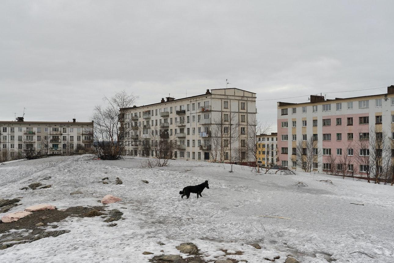 Ivanov-13