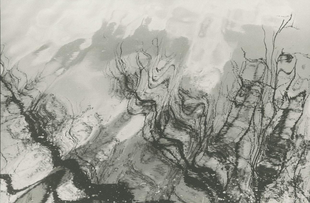 ranchukov-creation-5