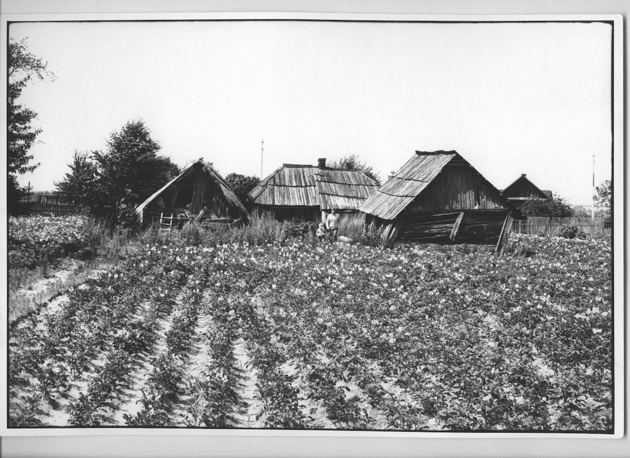 ranchukov-pogliad-13