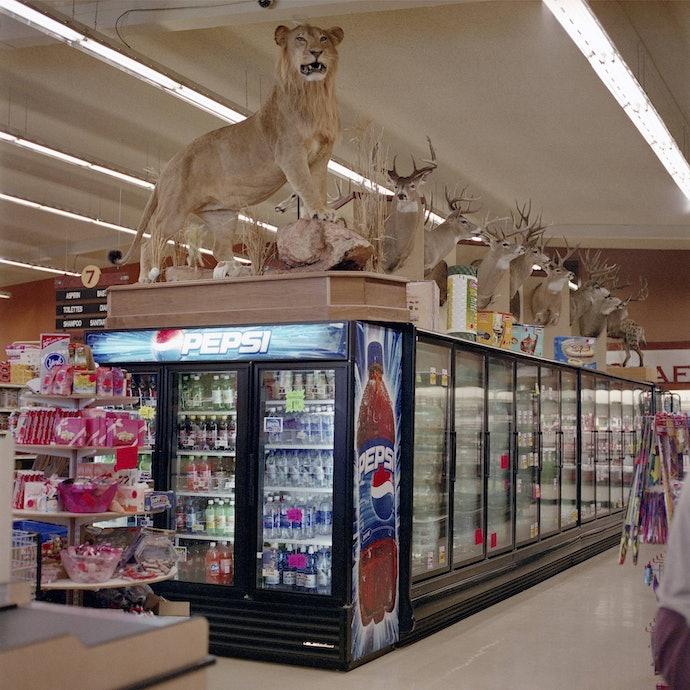 supermarket_safari_opt
