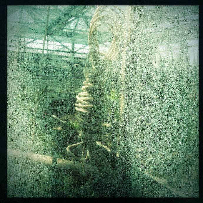 Artemova_Botanic_Garden_1500_12