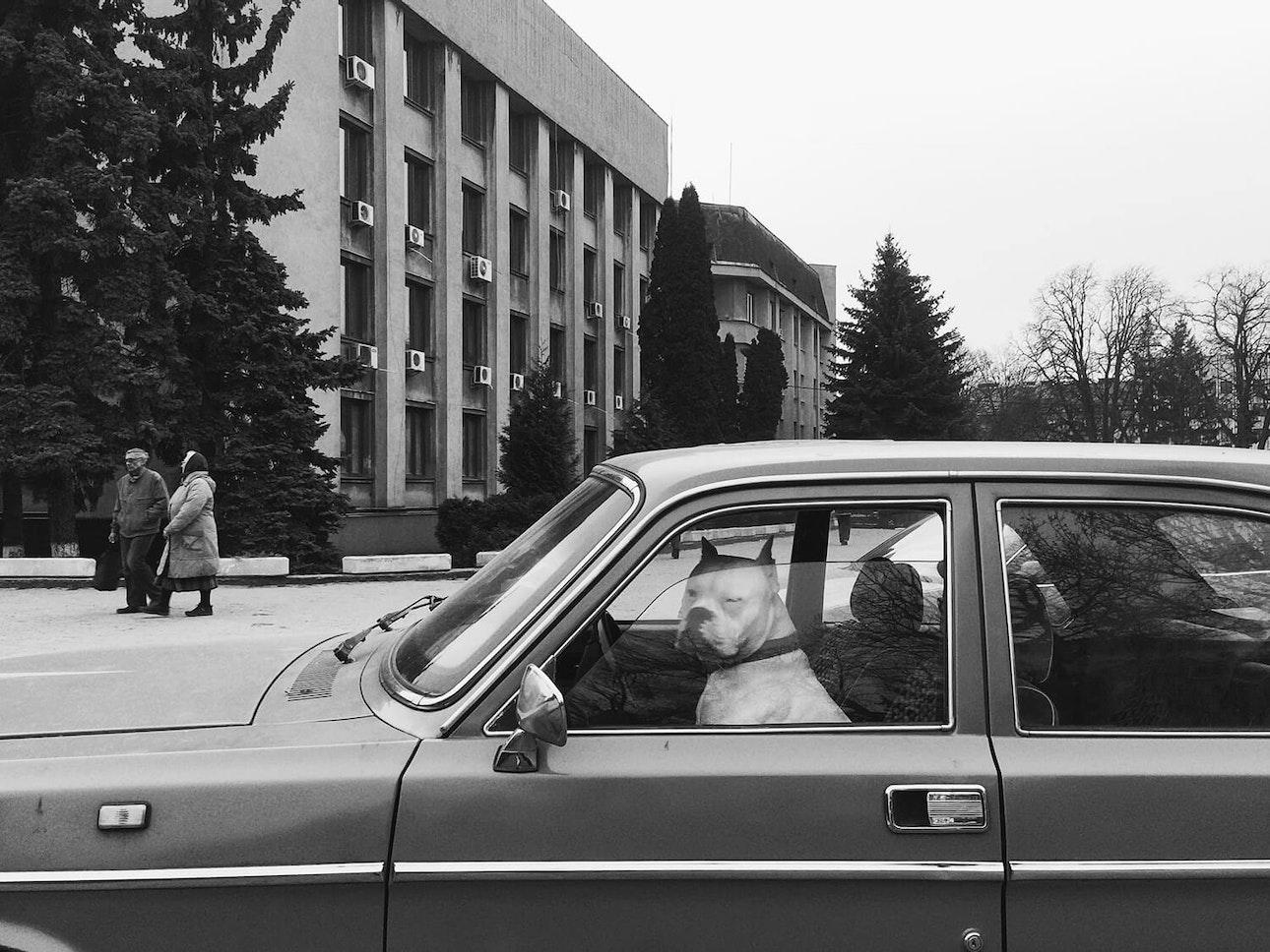 Олександра Лівень_2