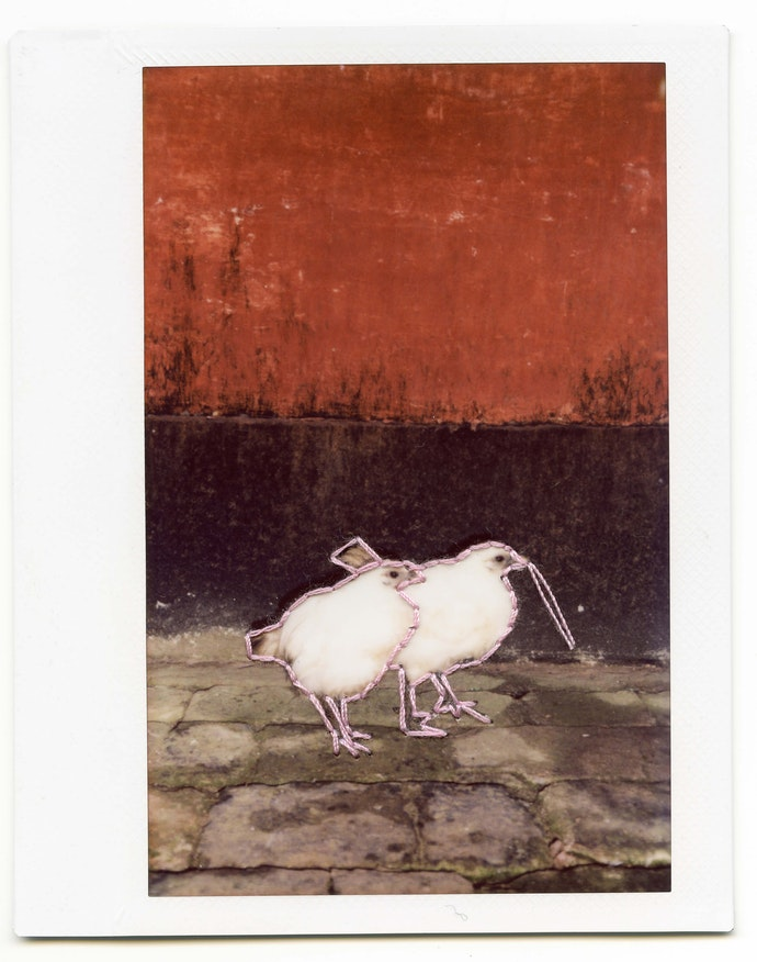 polaroid_045 copy