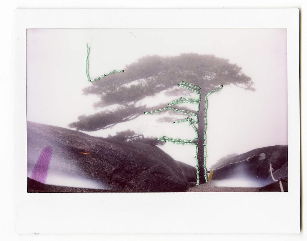 polaroid_057 copy