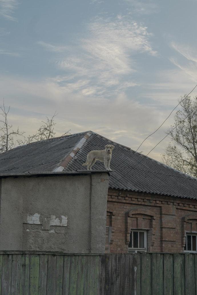 kharkiv_1