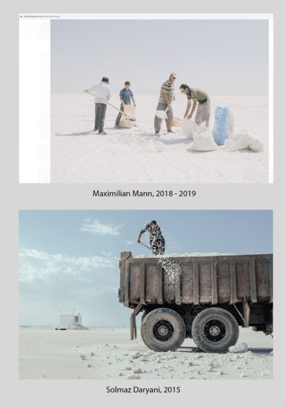 comparison_daryani_mann_08-768x1024-1-563x800