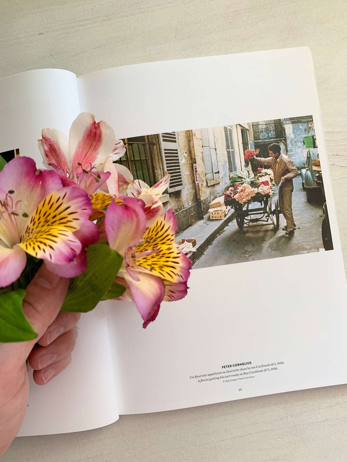 купил цветы_aleksei_nilov