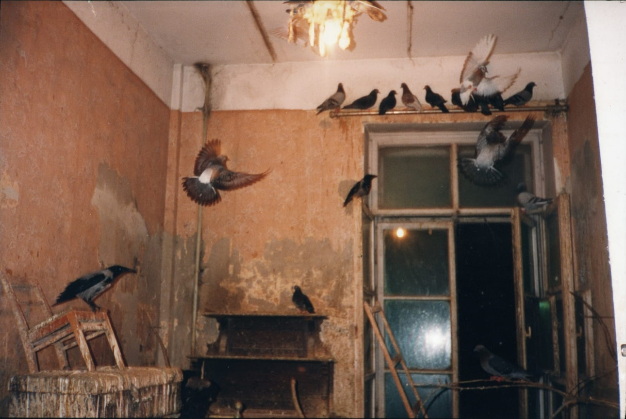 A HUNDRED SUMMERS, A HUNDRED WINTERS- KISHINEV '92, 1991-1993 2