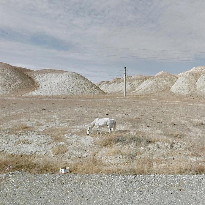 White Horse_Kyrgyzstan_agoraphobia