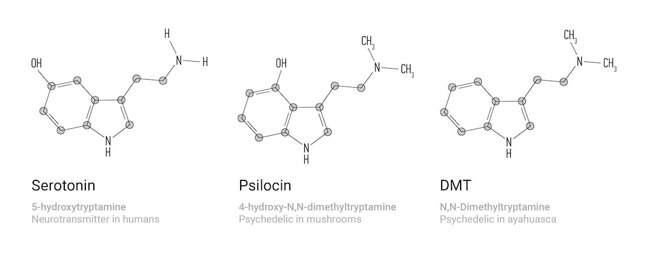 molecules-en-01