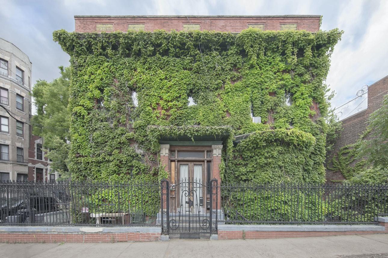 A South Bronx Mansion-Marc Yankus-2017-South Bronx