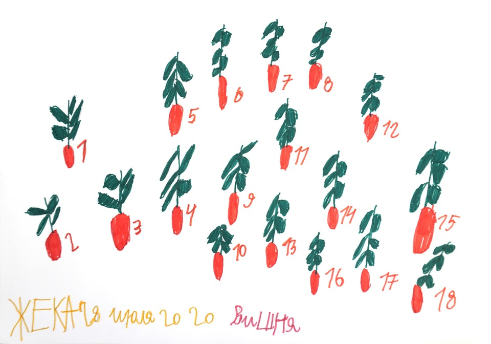 Yevhen Holubentsev A2 cherries