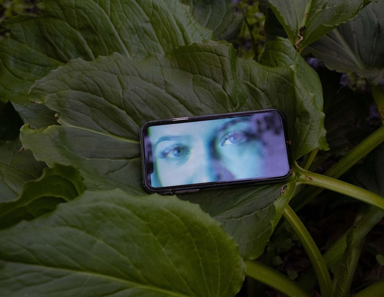 20_ira_lupu_webcam