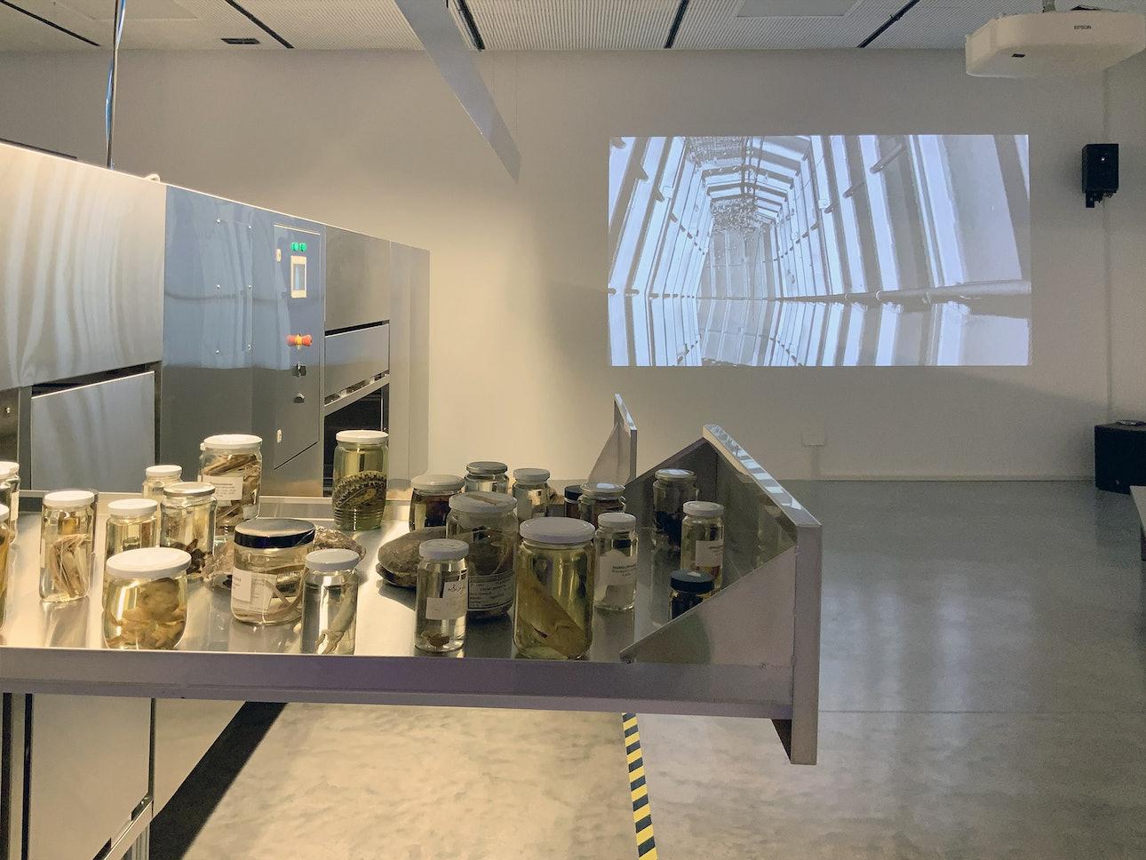 Павильон Израиля на архитектурной биеннале в Венеции